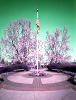Pinhole Color in Westerville